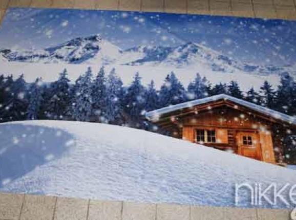 Foto auf Gartenposter winter
