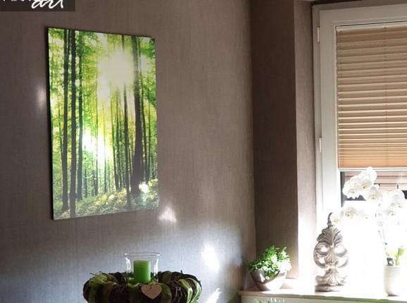 Foto auf Aluminium - Wald