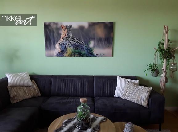 Foto auf Acrylglas von einem Leoparden