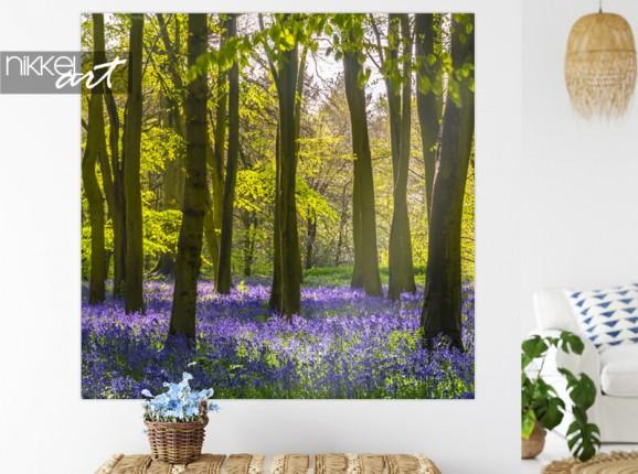 Wandaufkleber: Wald mit rundblättrigen Glockenblumen