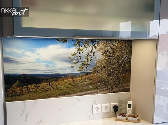 Küchenrückwand glas motiv Olivenbaum