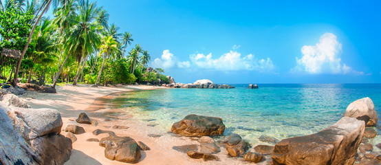Beautiful tropical beach at exotic island with palm trees