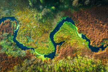 Top down view of river and swamps in autumn, Poland